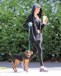 Miley+Cyrus+Takes+Dog+Walk+gSrmcrcj_pix