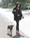Miley+Cyrus+Takes+Dog+Walk+QtgSjAPRzU_x